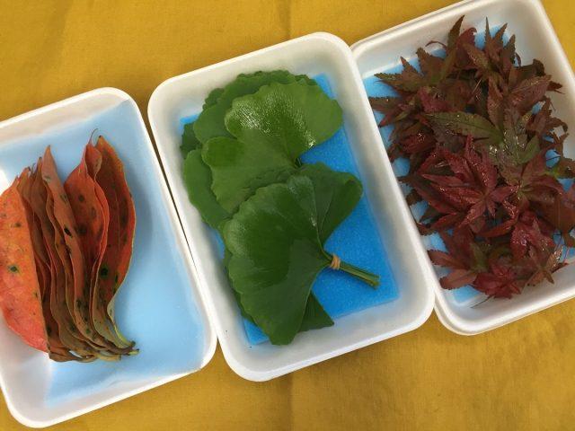 柿の葉、銀杏、赤もみじ