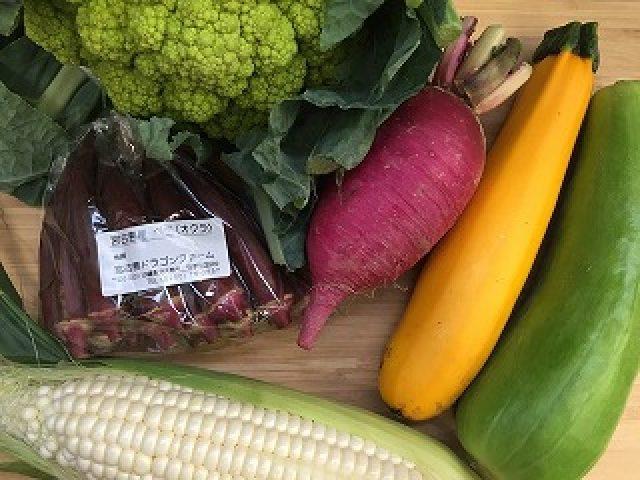 夏のこだわり野菜