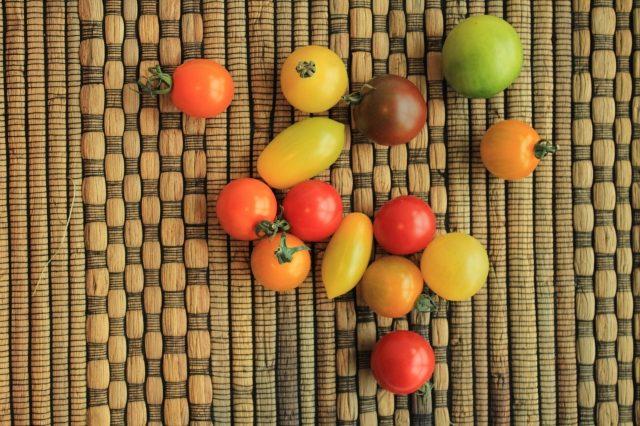 彩りミニトマト