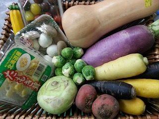 秋のこだわり野菜イロイロ