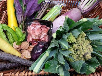 TSUKASAセレクト|業務用野菜のベジクル