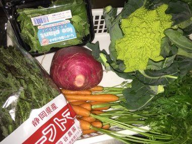 旬のこだわり野菜