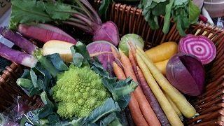 オススメ野菜ボックス
