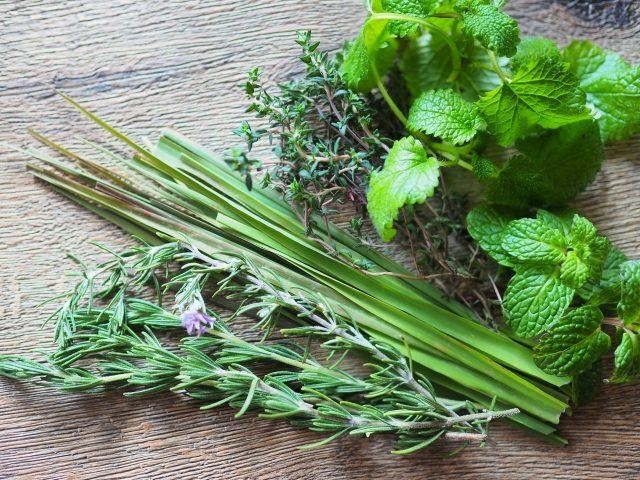 ハーブ|業務用野菜のTSUKASA