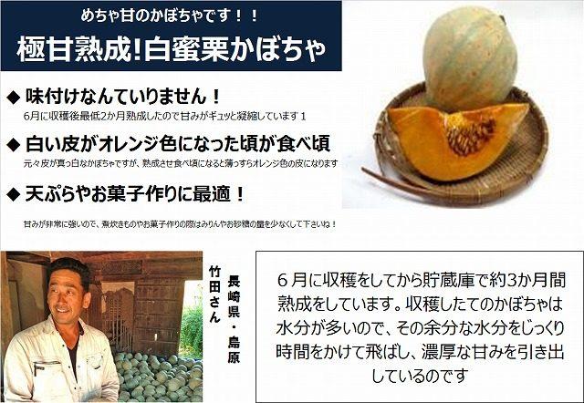 長崎県の竹田さんの作ったこだわり野菜。 「熟成かぼちゃ