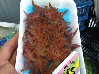 赤もみじ|業務用野菜のベジクル