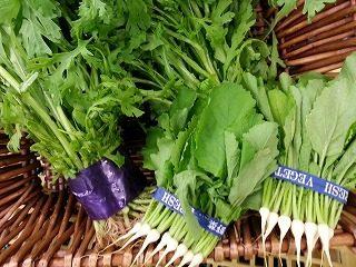 冬季限定の生食用の春菊|業務用野菜のベジクル