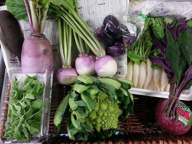 彩りがステキな秋冬野菜 業務用野菜のベジクル