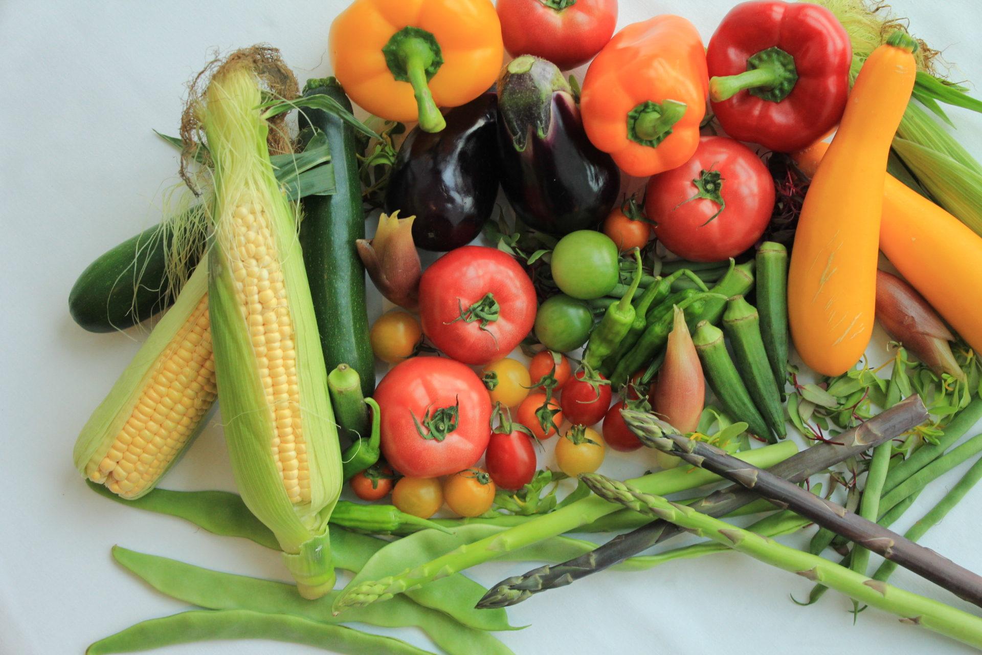 業務用野菜のTSUKASA
