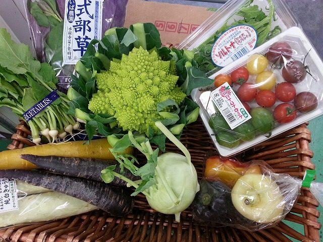 べジクルのオススメ野菜|業務用野菜のベジクル