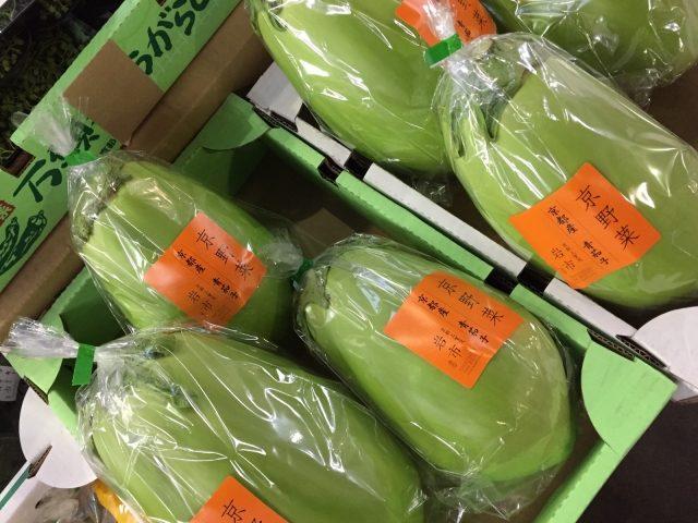 京都の青茄子