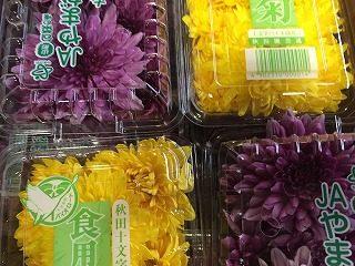 紫色の食用菊「モッテ菊」、食用菊(黄色)