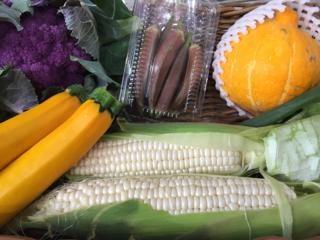 べジクルのオススメ野菜ボックス