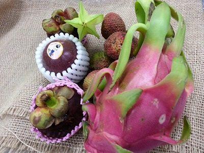 トロピカルフルーツも今が最盛期  夏の香りが爽やかな  パッションフルーツ スターフルーツ ドラゴンフルーツ ※ライチ ※マンゴスチン