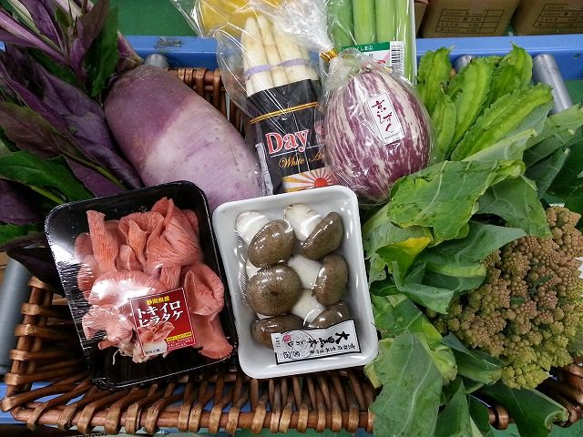 TSUKASAセレクトのおすすめ野菜