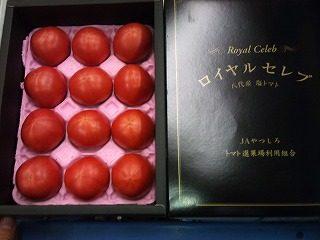 塩トマトの王様「ロイヤルセレブトマト」