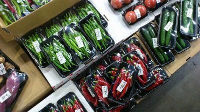 京野菜|業務用野菜のTSUKASA