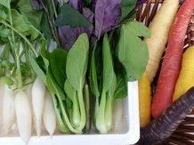ミニ野菜 |業務用青果のTSUKASA