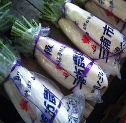 正月野菜|業務用野菜のTSUKASA