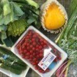地方のお客様|業務用野菜のTSUKASA