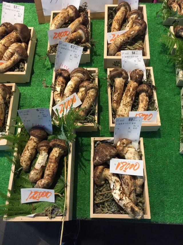 キノコの取り扱いカタログ|業務用野菜のベジクル